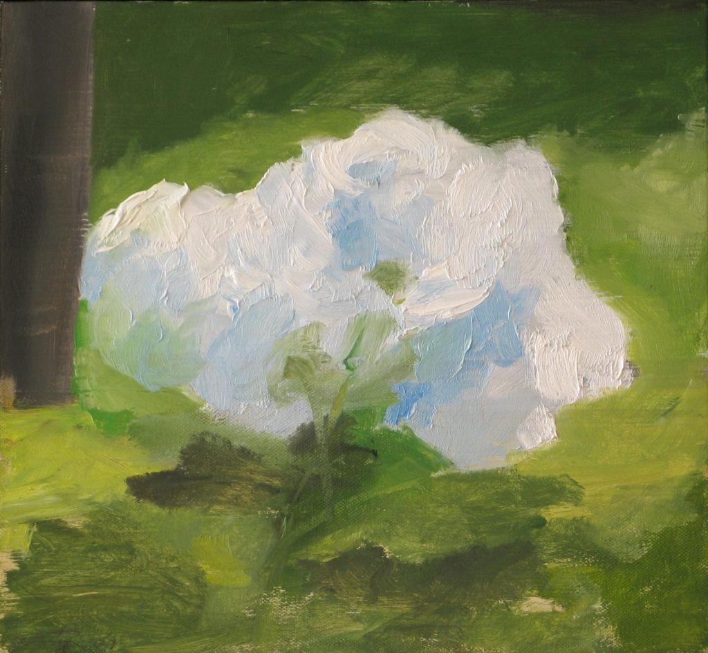 Hydrangea, 2009. Oil on linen 10.5 x 11 inches framed