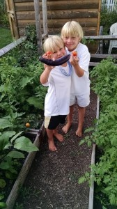 James (6) with William with the first pick of egglant and tomatoes