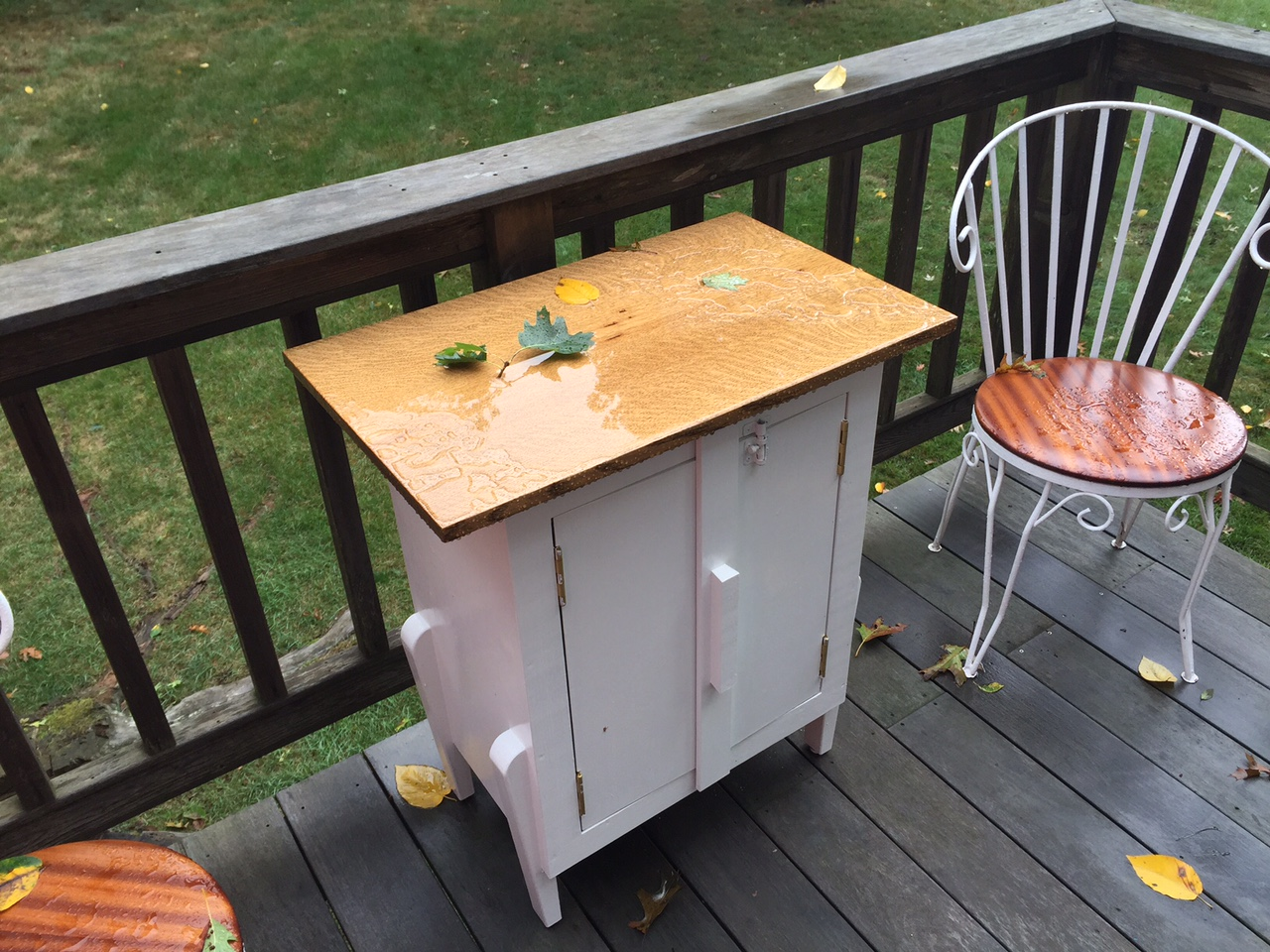Never Paint Over Purple Heart & Outdoor Cabinet Q&A