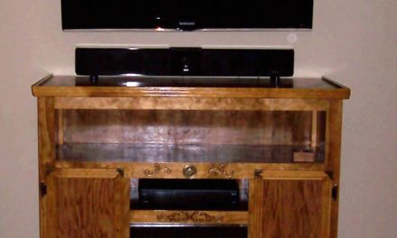 Entertainment Center & Fireplace by David Hibbitts
