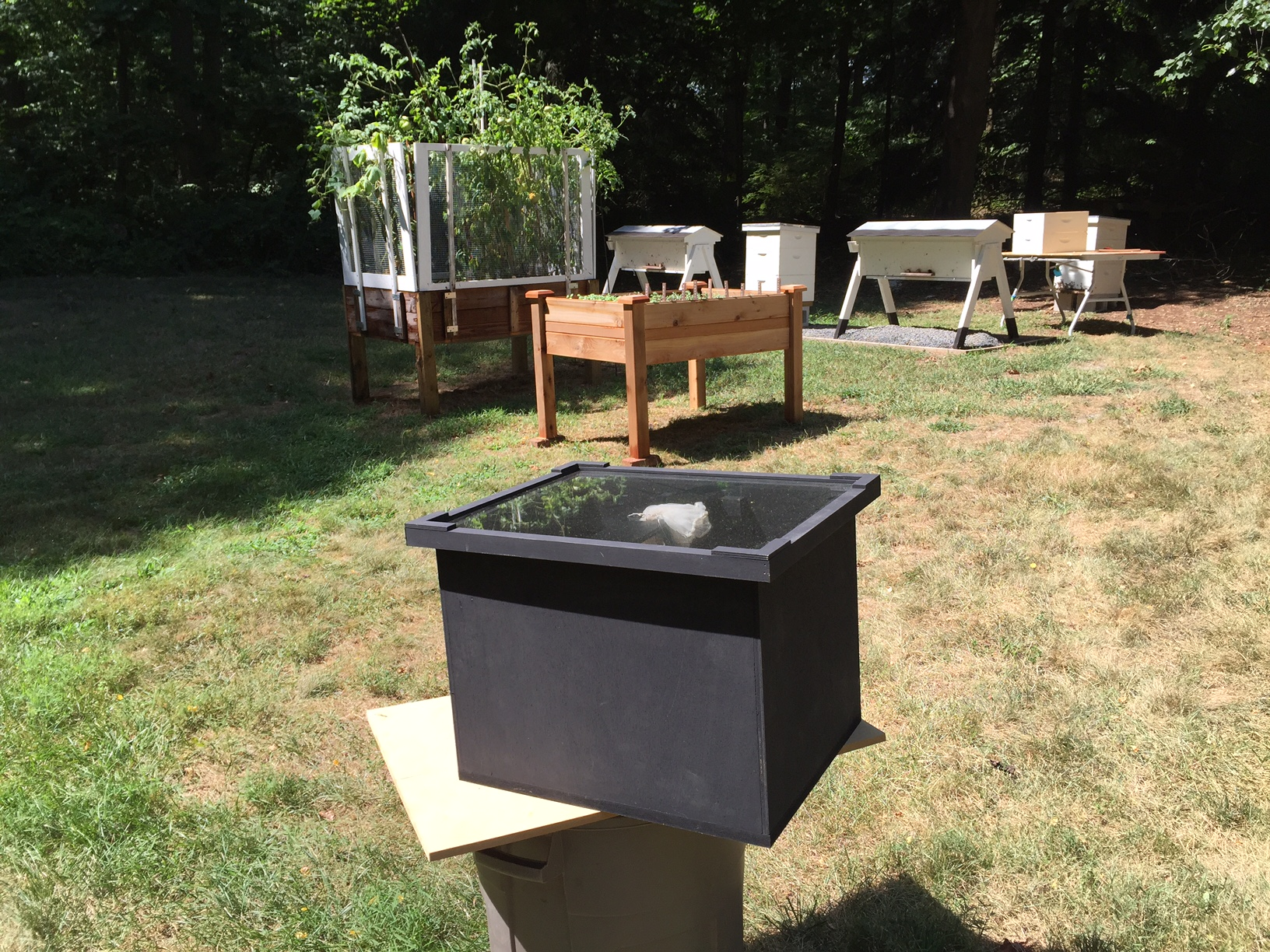 Make a Solar Wax Melter for Beeswax