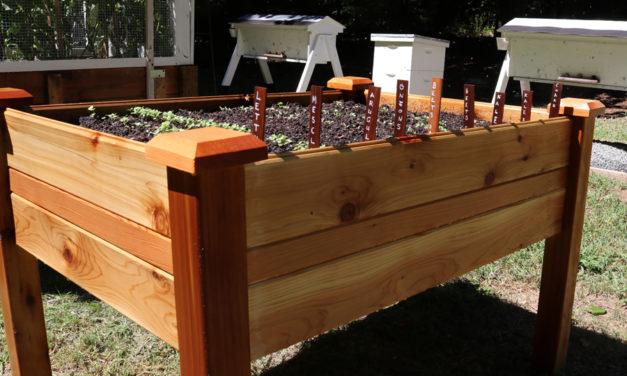 Assemble an Elevated Garden Bed – Plant a Fall Garden