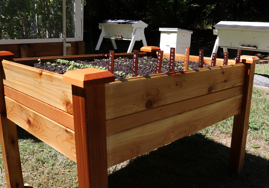 Assemble an Elevated Garden Bed – Plant a Fall Garden
