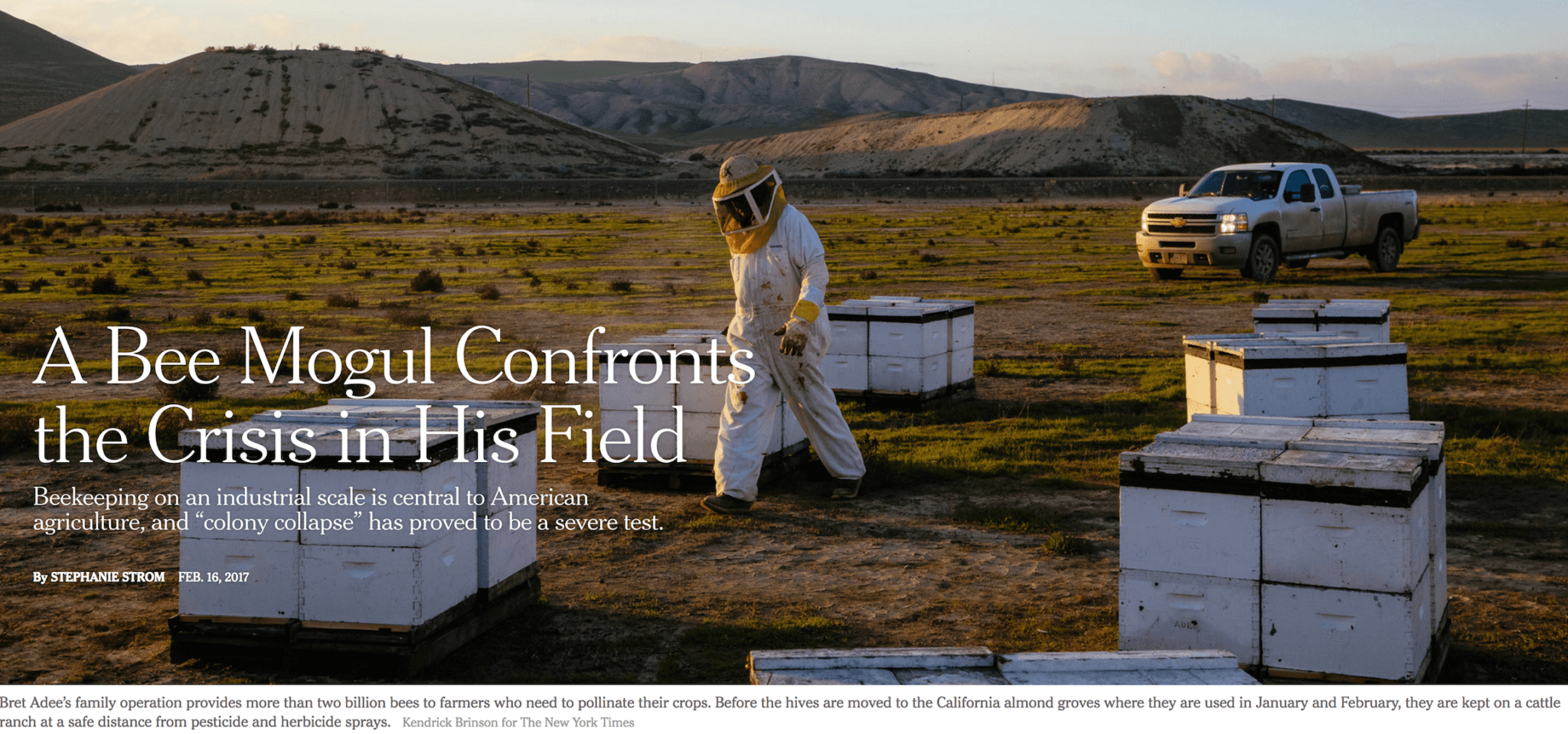 What's Killing The Bees? A Bee Mogul Confronts The Crisis In His Field