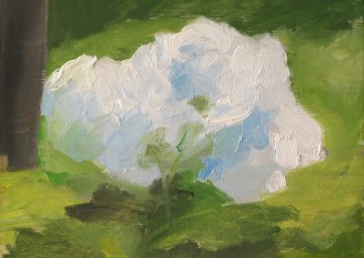 Hydrangea, 2009.  Oil on linen 10.5 x 11 inches framed