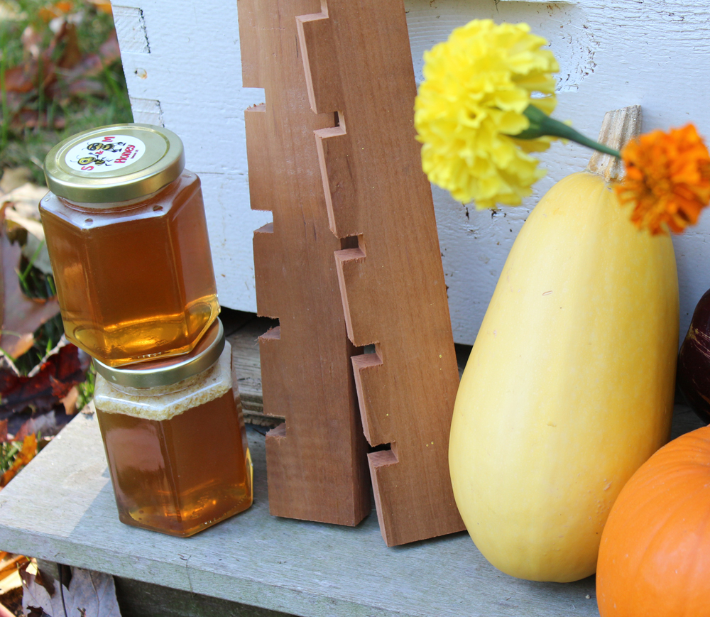 How To Make Mouse Guards & Huge Fall Honey Harvest