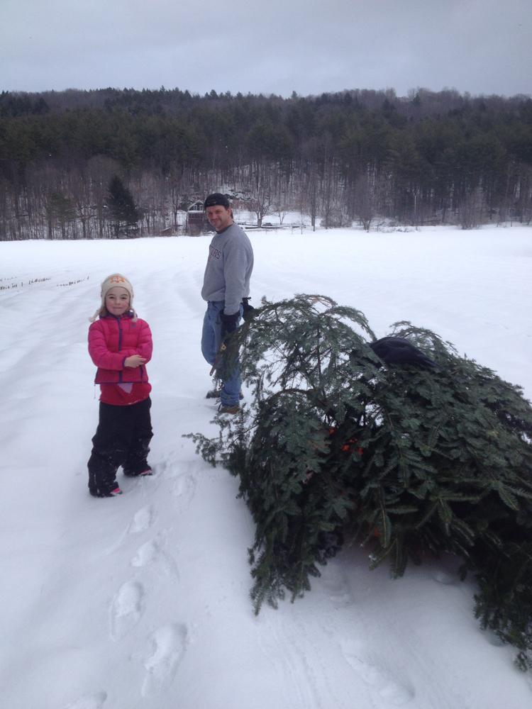 Cutting Down A Christmas Tree