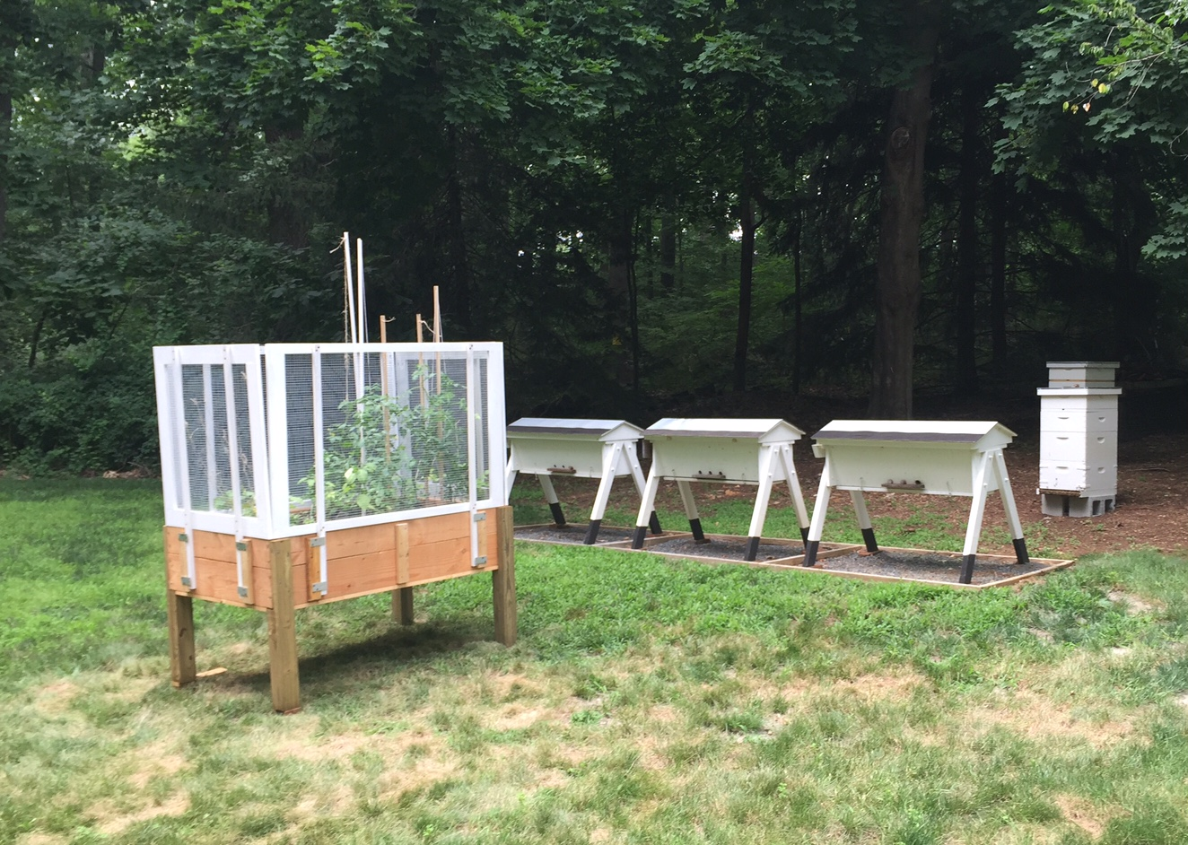 Build A Fence for the Stand Up Garden Planter