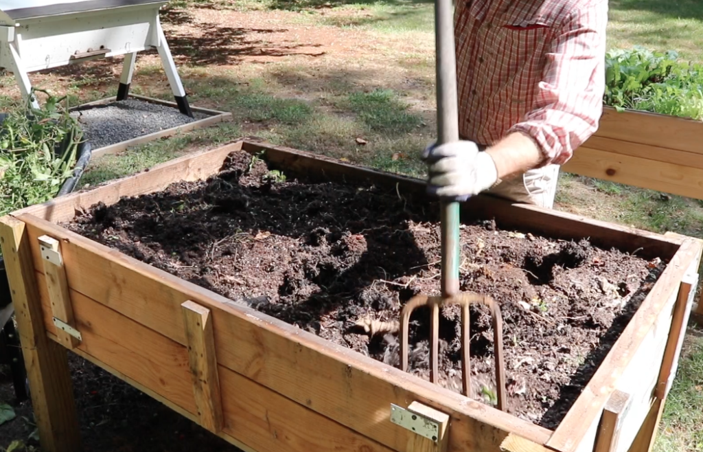 Turning over the summer garden with a pitchfork. I added some fertilizer to give the soil a boost